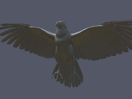 Raven Model created in Maya. For the love of birds and the sake of rigging.